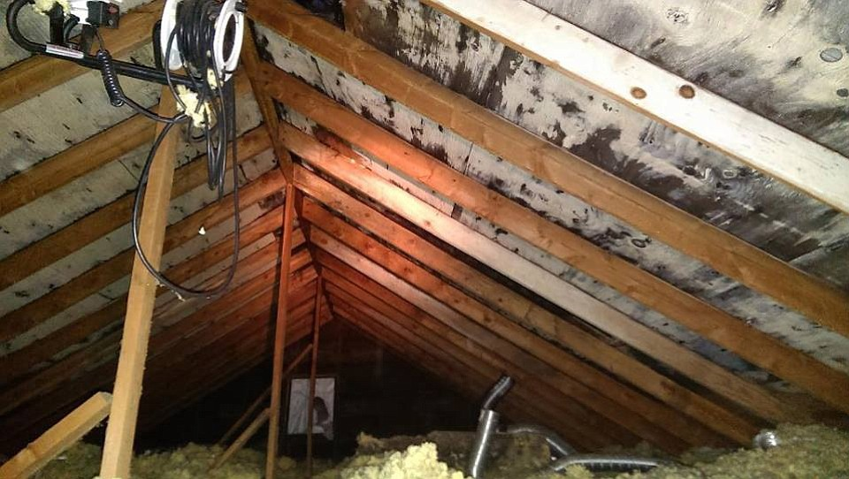 Mold Makes Vancouver House Uninhabitable The Columbian