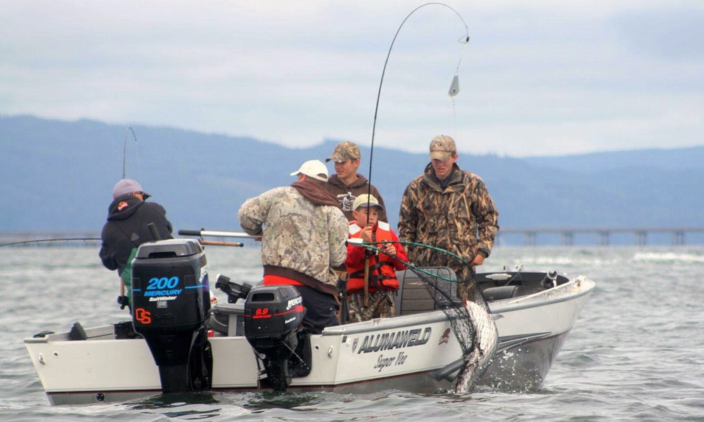 Monster fall chinook return expected for columbia river for Salmon fishing season oregon