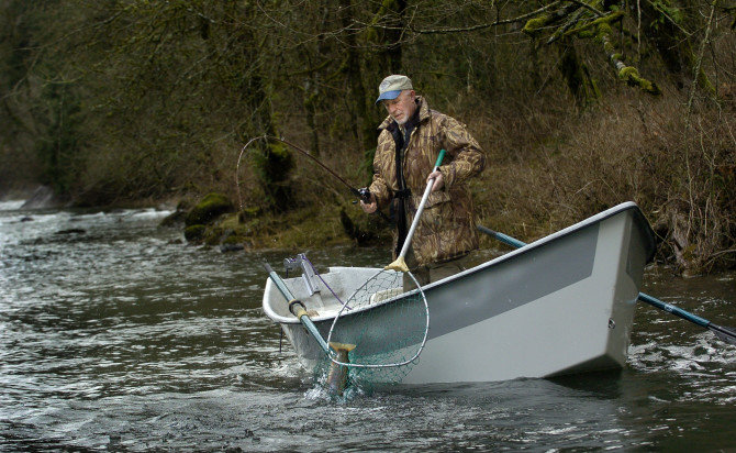 East fork lewis designated wild steelhead gene bank the for Fish counts bonneville dam