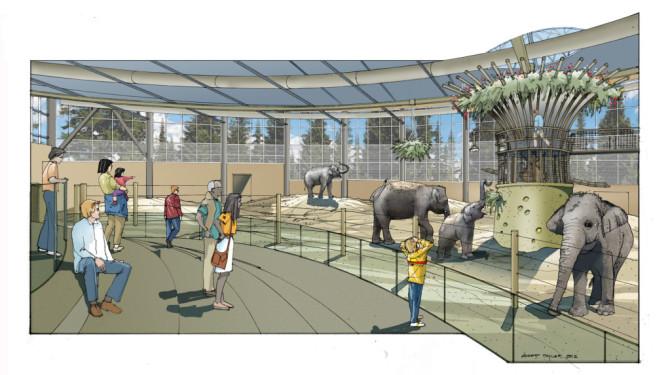Oregon Zoo S Beloved Elephants Getting More Room To Roam