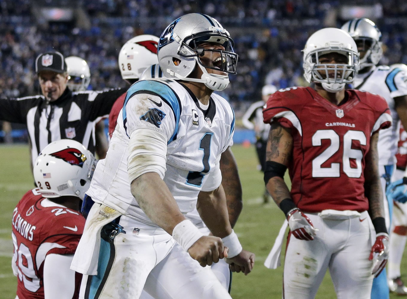 How to Watch the Cardinals-Panthers NFC Championship Game Live Stream Online