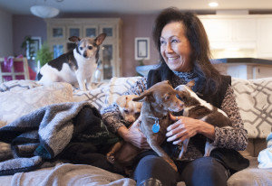 At home in Camas, animal lover Caroline Reiswig gathers together her rescue dogs, the smallest of wh