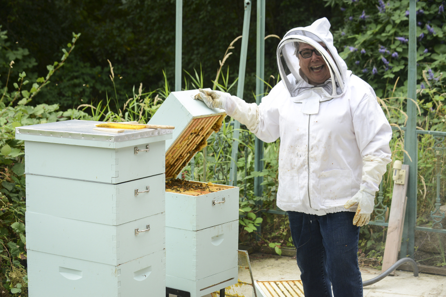 Will Backyard Beekeeping Solve The Rapid Decline Of Honeybees? | The  Columbian