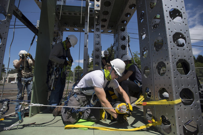 Renewable energy field?s flourishing brings new careers