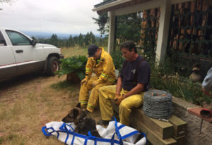 Clark County Fire & Rescue firefighters Kenny Bjur and Todd McCabe take a break with Sheppy afte