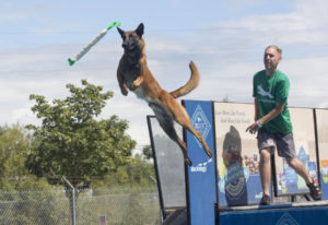 Dane Seidlitz throws a toy Saturday for his dog, Aegon, as part of the Dock Dogs competition at the