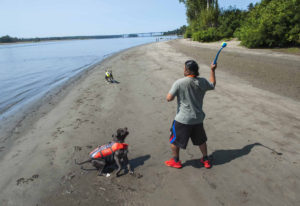 Michael Rodriquez of Camas throws a ball for his dogs Shadow and Penelope while walking along the Co