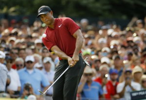 Tiger Woods chips onto 14th green during the final round of the PGA Championship golf tournament at