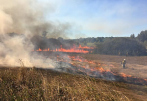 A controlled burn at the Ridgefield National Wildlife Refuge on Friday cleared about 26 acres of lan