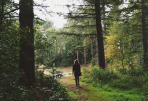 """Find yourself among the trees during Columbia Springs' """"Forest Therapy"""" workshop Sept. 22. Garden Me"""