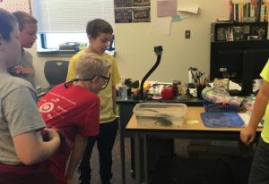 Ridgefield: Sunset Ridge Elementary School fifth-grade teacher Annie Pintler adopted an axolotl for