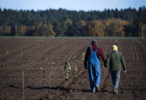 Rob Baur and his wife, Sue Marshall, walk a row of freshly planted hazelnut trees at Baurs Corner Fa
