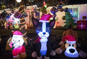 """Cathy McGuire's inflatable """"dog pound,"""" one section of her yard full of Christmas inflatables and de"""
